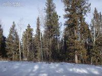 Home for sale: 1316 Spruce Ridge Ln., Woodland Park, CO 80863