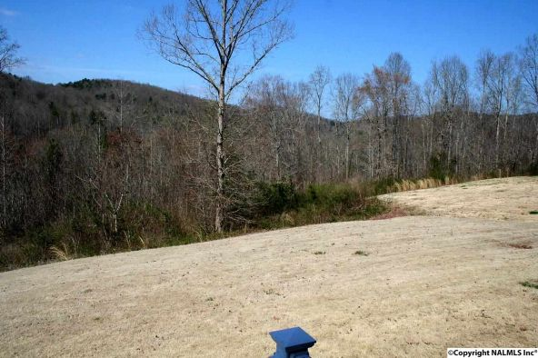 352 Tara Dr., Guntersville, AL 35976 Photo 20