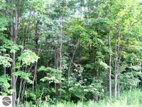 Home for sale: Covert, Kalkaska, MI 49646