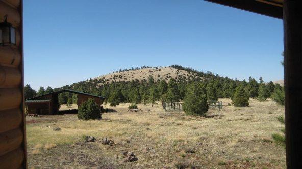10 N. 1349, Vernon, AZ 85940 Photo 39
