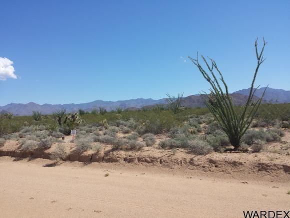 1008 S. Dale Evans Rd., Yucca, AZ 86438 Photo 3