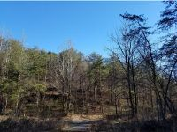 Home for sale: Tbd Pond Rd., Rogersville, TN 37857