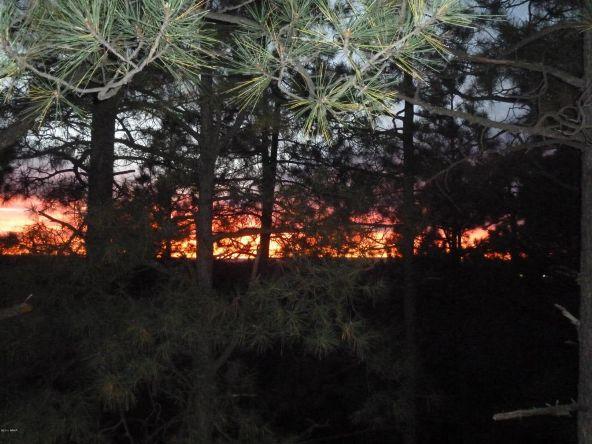 2151 E. Ridge Dr., Pinetop, AZ 85935 Photo 16