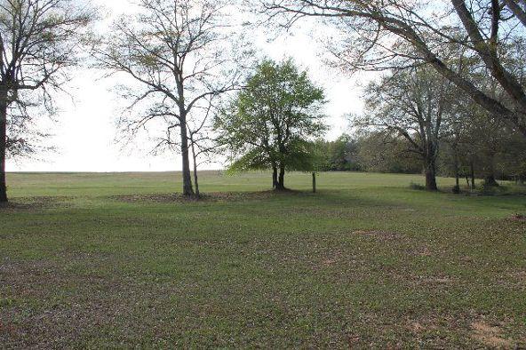 794 Freedom Dr., Midland City, AL 36350 Photo 33