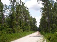 Home for sale: 0 Strickland Rd., Homerville, GA 31634
