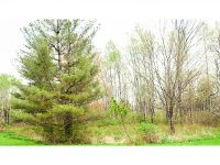 Home for sale: Lot A W. Dryden Rd., Dryden, NY 13068