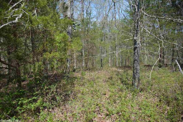 7 Ac Brownsville Rd., Greers Ferry, AR 72067 Photo 4