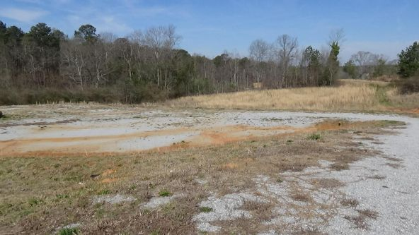 13033 Hwy. 22east, New Site, AL 36256 Photo 4