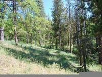 Home for sale: Pine Creek Rd. 6, Bickleton, WA 99322
