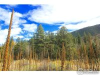 Home for sale: 1 Tbd Poudre Canyon Hwy., Bellvue, CO 80512
