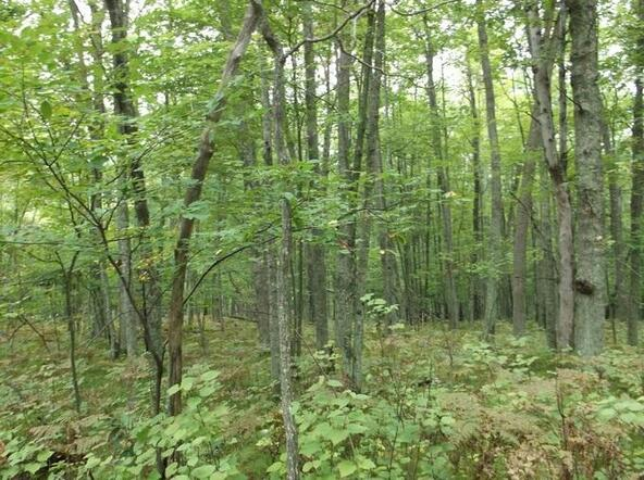 Lot7&Out7 Hydro Ct., Crivitz, WI 54114 Photo 12