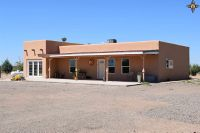 Home for sale: 10870 Lucca Rd. S.W., Deming, NM 88030