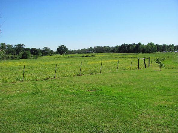 1887 County Rd. 49, Dawson, AL 35963 Photo 62