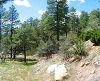 Home for sale: 1759 Rolling Hills Dr., Prescott, AZ 86303