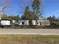Home for sale: 45826 Washington Dr., Paisley, FL 32767