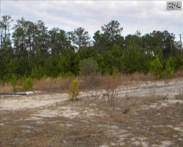 321/331 Rice Meadow Way, Columbia, SC 29229 Photo 8