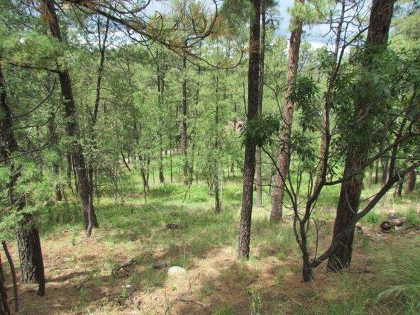 119 del Monte Dr., Alto, NM 88312 Photo 10