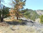 Tract 4 Robie Ridge, Boise, ID 83716 Photo 11