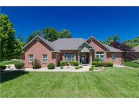 Home for sale: 517 Shady Ln., Lebanon, IL 62254