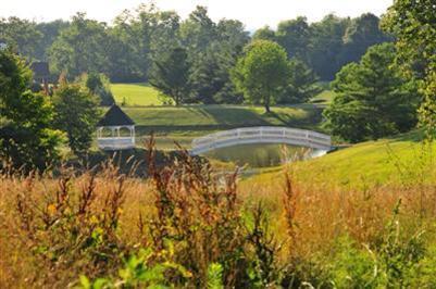 3925 Real Quiet Ln., Lexington, KY 40509 Photo 8