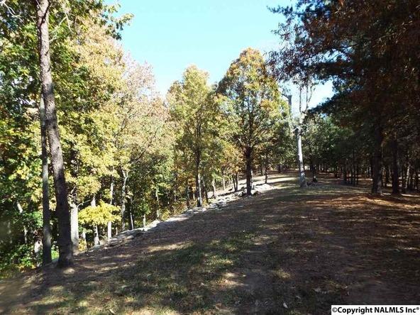 11 S. County Rd. 89, Mentone, AL 35984 Photo 12