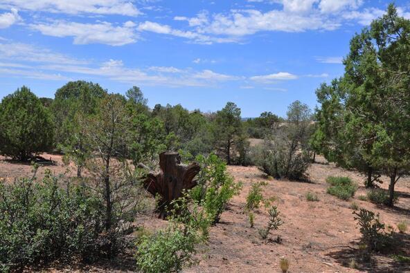 14590 N. Pauls Spur Dr., Prescott, AZ 86305 Photo 5