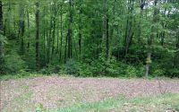 Home for sale: L 107 Overlook Brasstown, Brasstown, NC 28902