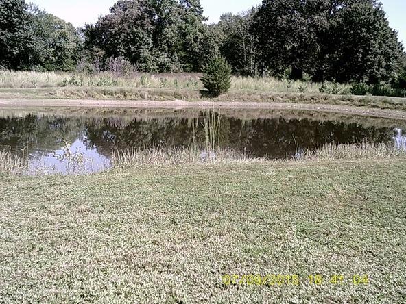 432 Cr 3355, Clarksville, AR 72830 Photo 19