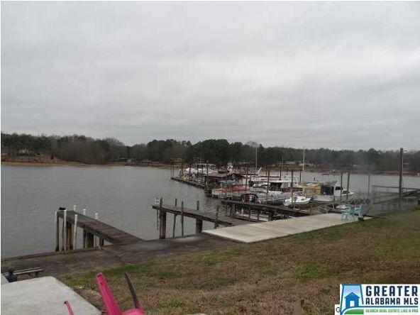 1012 Coosa Island Rd., Cropwell, AL 35054 Photo 26