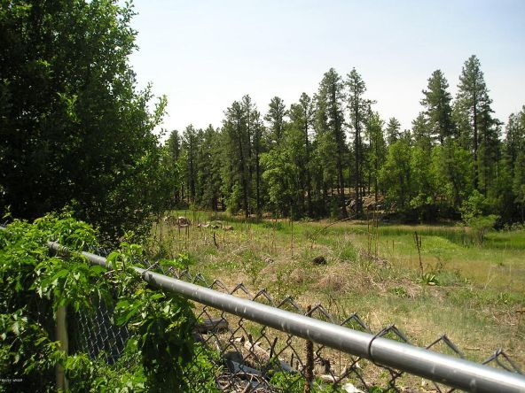 1083 W. Apache Ln., Lakeside, AZ 85929 Photo 23