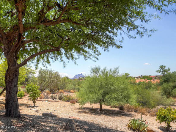 14402 N. Ibsen Dr., Fountain Hills, AZ 85268 Photo 66