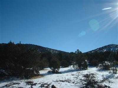 7382 N. Apache Avenue, Williams, AZ 86046 Photo 2