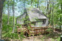 Home for sale: 134 Squirrel Tree Ln., Wintergreen, VA 22958