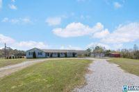 Home for sale: 4428 Hwy. 30, Wilsonville, AL 35186