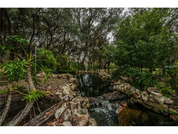 2270 N. Highland Avenue, Tarpon Springs, FL 34688 Photo 18