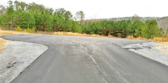 380 Co Rd. 907 (Lot 16), Crane Hill, AL 35053 Photo 4