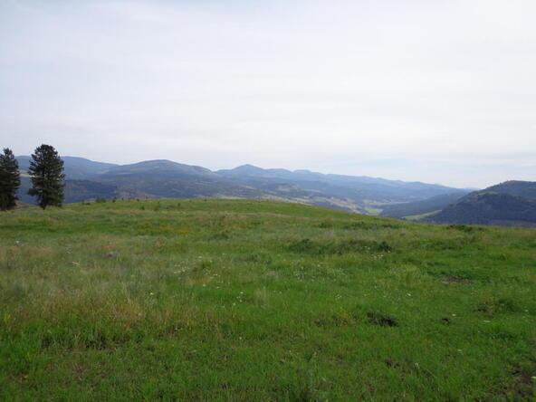 B-U Graves Mt. Rd., Curlew, WA 99118 Photo 13