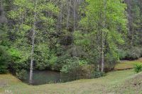 Home for sale: 0 Oakey Ridge Rd., Lakemont, GA 30552