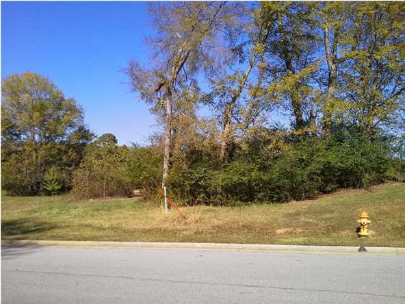 9 Skypark Rd., Florence, AL 35634 Photo 3