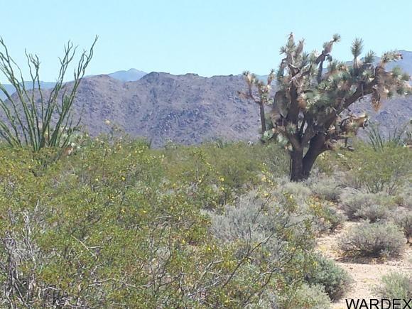 1008 S. Dale Evans Rd., Yucca, AZ 86438 Photo 5
