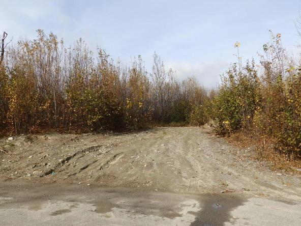 2677 E. Beech Way, Wasilla, AK 99654 Photo 28