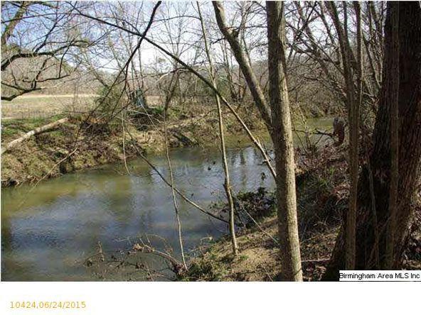 4 Horton Mill Rd., Oneonta, AL 35121 Photo 50