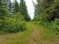 Home for sale: 16800 N. Cougar, Newman Lake, WA 99025