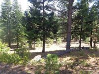 Home for sale: 405 Morningside, Lake Almanor, CA 96020