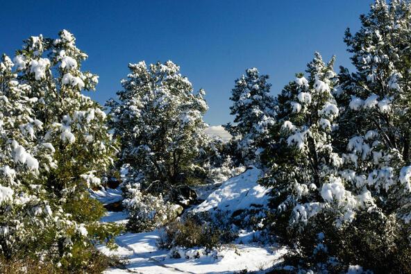 17955 W. Buckhorn Dr., Peeples Valley, AZ 86332 Photo 47