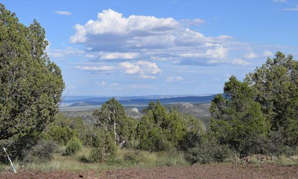 76+83+92 Shadow Rock Ranch, Seligman, AZ 86337 Photo 12