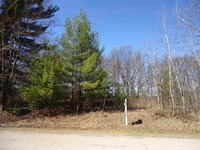 Home for sale: Lot 29 Lone Pine St., Stevens Point, WI 54481