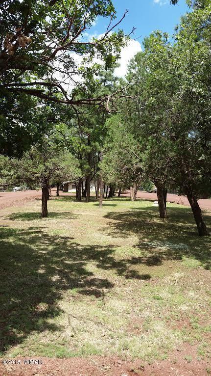 4891 Woodland, Lakeside, AZ 85929 Photo 2