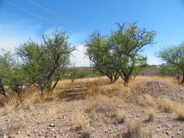 594 Camino Kansas, Rio Rico, AZ 85648 Photo 4