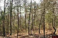 Home for sale: Lot 3 Dillenger Point Rd., Elizabeth, AR 72531